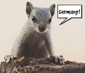 Pekraut - German RAT starts gnawing